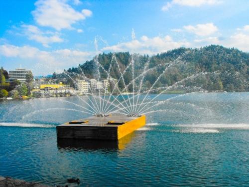Bled 2012
