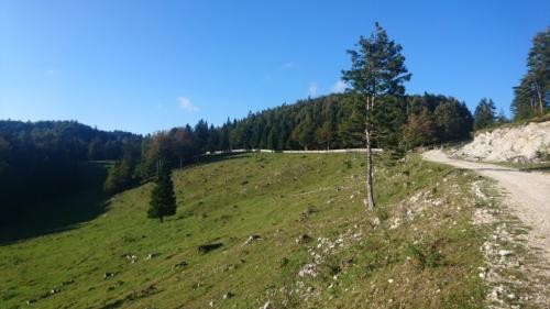 Menina planina 2018