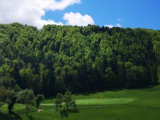 Kalanov hrib